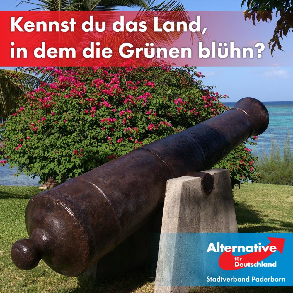 Kennst Du das Land, wo die Kanonen blühn?